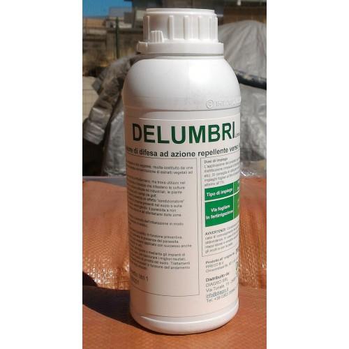 Delumbri